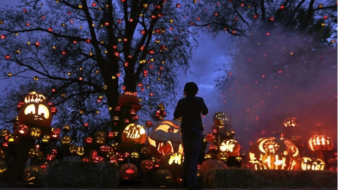 zoo offering sensory-friendly nights for jack-o-lantern spectacular