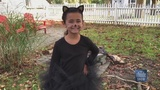 Create a PURR-fect costume for Halloween